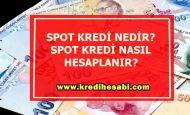 Spot Kredi Nedir? Spot Kredi Faiz Oranları
