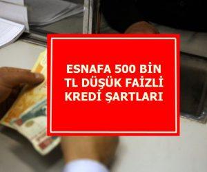 Esnafa 500 Bin TL Düşük Faizli Kredi Şartları