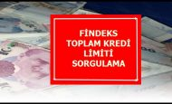 KKB Toplam Kredi Limiti Sorgulama