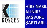 KOSGEB Hibe Kredi Alma Şartları ve Evrakları 2019